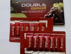 Result on liver cancer and hepatitis by using Double stemcell