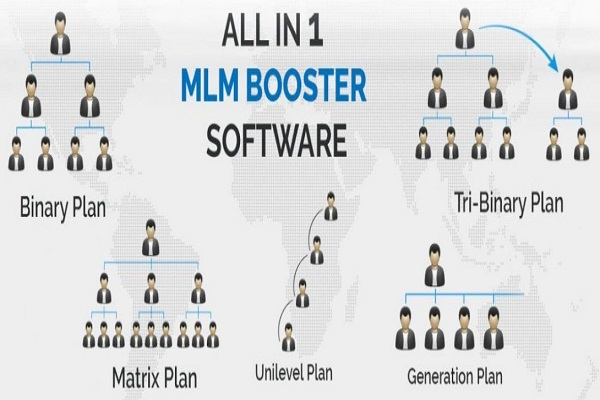Multi Level marketing (MLM) Bussiness Plan Developer, software developer in Rohini, delhi